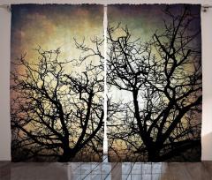 Yansıyan Ağaç Silüeti Fon Perde Siyah