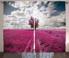 Mor Çiçek Tarlası Fon Perde Ağaç Gökyüzü Bulut