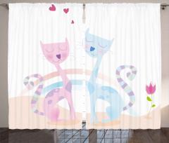 Kedi Aşkına Dair Fon Perde Pembe ve Mavi