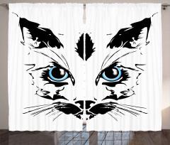 Mavi Gözlü Kedi Fon Perde Dekoratif Şık
