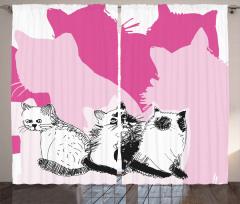 Farklı Yöne Bakan Kedi Fon Perde Sevimli