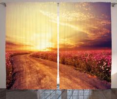 Mor Çiçekli Güneşli Yol Fon Perde Gün Doğumu