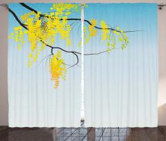 Gökyüzü ve Mimoza Çiçekleri Fon Perde Sarı Mavi