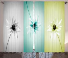 Üç Renkli Çiçekler Fon Perde Şık Tasarım Dekoratif