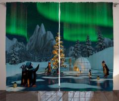 Penguen ve Kuzey Işığı Fon Perde Gökyüzü