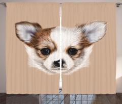 Sevimli Köpek Portresi Fon Perde Kahverengi