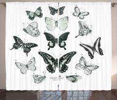 Siyah Beyaz Gri Kelebekler Fon Perde Dekoratif