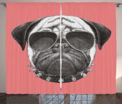 Güneş Gözlüklü Köpek Fon Perde Tasmalı Pembe