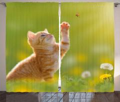 Uğur Böceği ve Pati Fon Perde Tatlı Kedicik