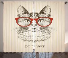 Kırmızı Gözlüklü Kedi Fon Perde Zeki Ol