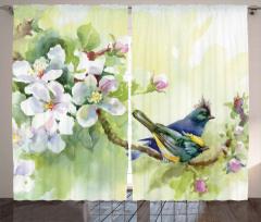 Tepeli Minik Kuşlar Fon Perde Meyve Çiçekleri
