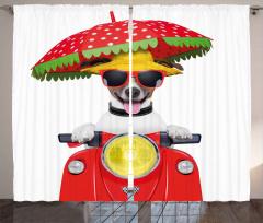 Motosikletli Gözlüklü Köpek Fon Perde Şemsiye