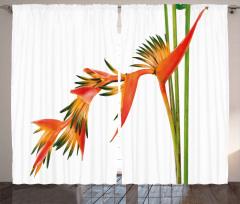 Tropikal Çiçek Desenli Fon Perde Turuncu Şık