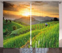 Pirinç Tarlasında Gün Batımı Fon Perde Gökyüzü