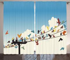 Telgraf Telindeki Rengarenk Kuşlar Fon Perde Şık