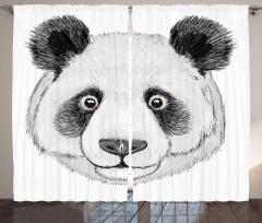 Sevimli Panda Portresi Fon Perde Siyah Beyaz