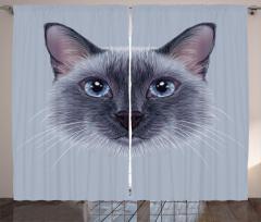Mavi Gözlü Kedi Desenli Fon Perde Dekoratif