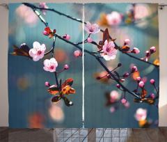 Japon Kiraz Çiçekleri Fon Perde Dekoratif Şık