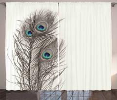 Tavus Kuşu Tüyleri Desenli Fon Perde Dekoratif