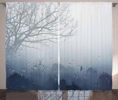 Sisli Ormanda Bir Gün Fon Perde Yağmur Damlaları