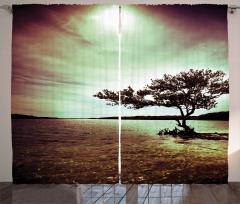 Denizdeki Ağaç Fon Perde Bulut Gökyüzü Doğa