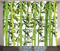 Yeşil Bambu Yaprakları Fon Perde Dekoratif Trend