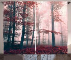 Ormanda Sonbahar Büyüsü Fon Perde Kırmızı Yaprak