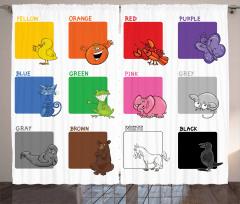 Renkleri Öğreniyorum Fon Perde Ördek Kedi Kelebek