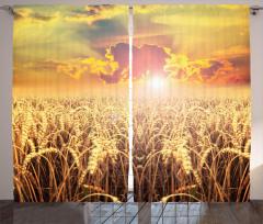 Buğday Tarlası Desenli Fon Perde Bulutlu Gökyüzü
