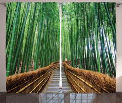 Huzurlu Orman Yolu Fon Perde Ağaçlar