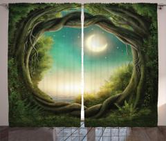 Ormanda Bir Gece Fon Perde Yıldızlar ve Ay