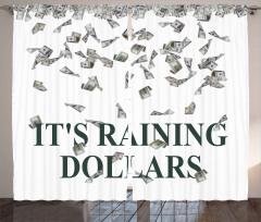 Dolar Yağmuru Desenli Fon Perde Nostaljik Şık