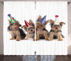 Şapkalı Köpek Desenli Fon Perde Kahverengi Şık