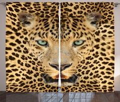 Leopar Portresi Desenli Fon Perde Vahşi Doğa