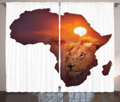 Dişi Aslan Desenli Fon Perde Afrika Turuncu Doğa