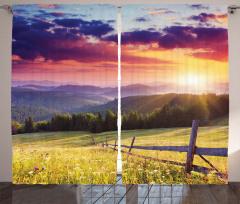 Sararmış Çimenler Fon Perde Gökyüzü Bulut Orman
