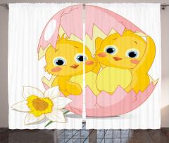 Sarı Civciv Desenli Fon Perde Pembe Yumurta