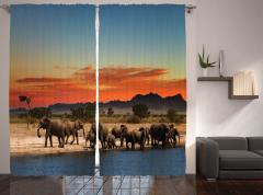 Fil Geçidi Temalı Fon Perde Afrika'da Gün Batımı