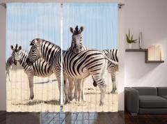 Zebra Desenli Fon Perde Afrika'da Yaşam Temalı