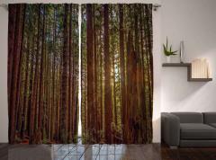 Huzurlu Orman Temalı Fon Perde Ağaç ve Doğa