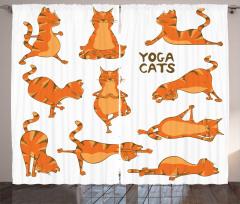 Yoga Yapan Sevimli Kedi Desenli Fon Perde Turuncu
