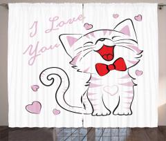 Kedi Severler için Fon Perde Pembe Beyaz Sevgi
