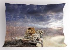 Leopar ve Gökyüzü Yastık Kılıfı Huzur Verici