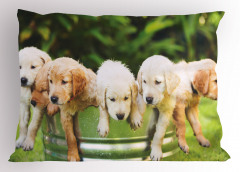Islak Köpekler Yastık Kılıfı Doğa Yeşil Dekoratif