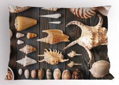 Deniz Kabuğu Desenli Yastık Kılıfı Ahşap Arka Plan