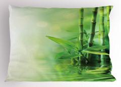 Bambu ve Sudaki Yansıma Yastık Kılıfı Trend