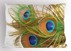 Tavus Kuşu Tüyü Desenli Yastık Kılıfı Yeşil Mavi Şık
