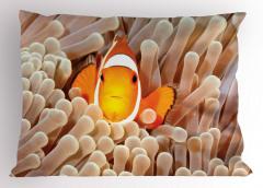 Balık ve Mercan Desenli Yastık Kılıfı Pastel