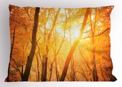 Güneşli Orman Yastık Kılıfı Turuncu Sarı Ağaç