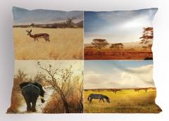 Afrika Yaban Hayatı Yastık Kılıfı Doğa